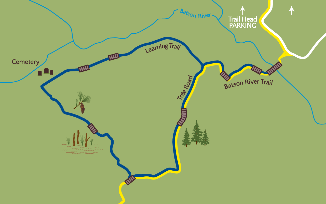 Learning Trail Map
