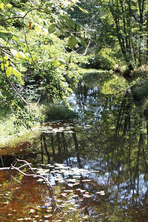 Batson River